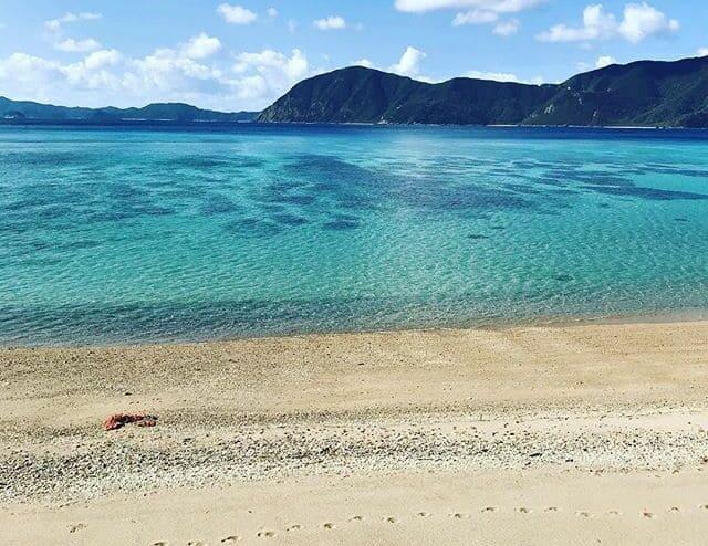 加計呂麻島のビーチ